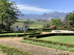 In Stellenbosch