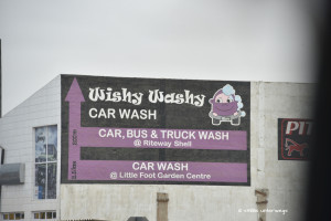 Wishy washy carwash