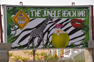 Jungle at the beach ;-)